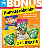 albert heijn folder